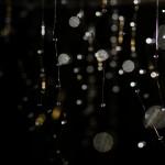ワークショップ&個展「ヤネウラリウム」